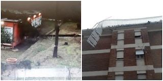 Danni maltempo a Roma: albero crolla su scuola, si staccano ringhiere ex case Armellini a Ostia