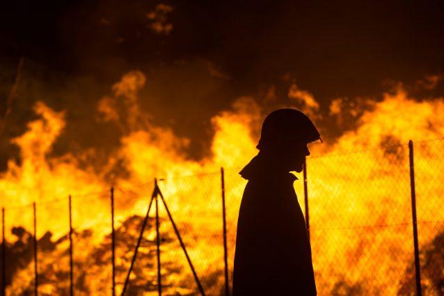 Roma devastata dagli incendi, due in un solo giorno: minacciata la pineta di Castel Fusano