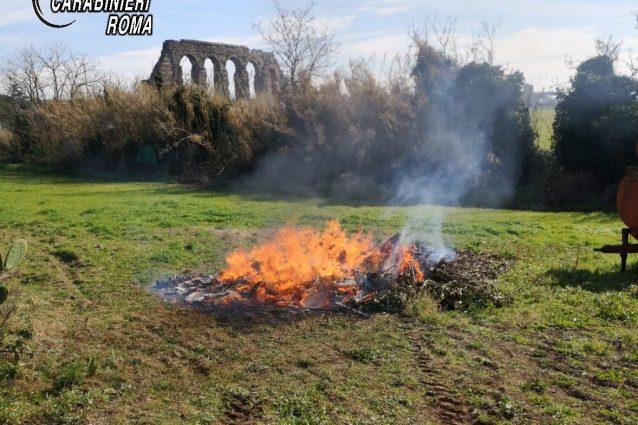Il rogo all'interno del parco regionale dell'Appia Antica