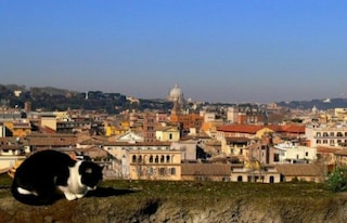 Previsioni meteo Roma 17 marzo: sole e caldo, temperature fino a 20 gradi