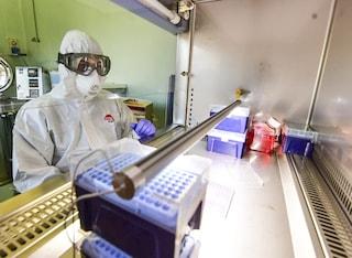 Coronavirus Lazio, 230 positivi: 113 nella città di Roma, casi in aumento nelle province