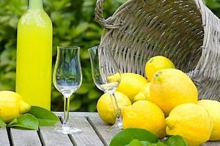 Limoncello: la ricetta originale del liquore tipico della costiera amalfitana