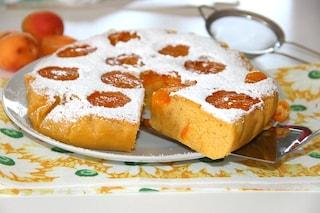 Torta di albicocche: la ricetta da preparare con albicocche fresche