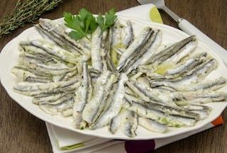 Alici in tortiera: la ricetta del secondo piatto tipico della Campania