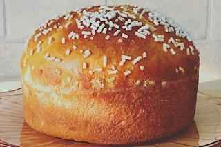 Focaccia veneta: la ricetta della fugassa dolce di Pasqua tipica del Veneto