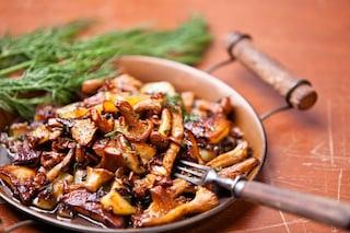 Padellata di finferli: la ricetta del contorno raffinato