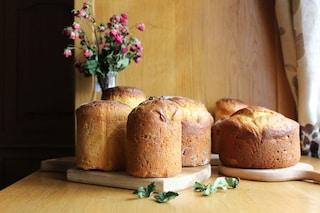 Schiacciata di Pasqua: la ricetta tradizionale toscana