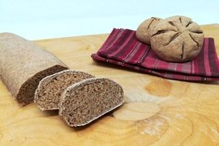 Pane di segale: la ricetta perfetta per prepararlo in casa