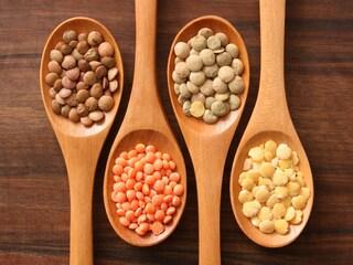 8 ricette con le lenticchie: le migliori idee tra tradizione e innovazione