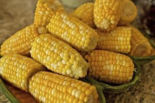 Pannocchie: come si cucinano le spighe di mais