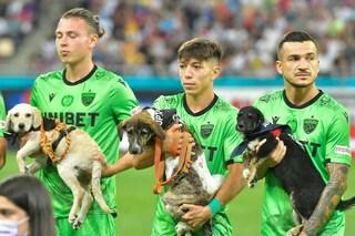"""In campo con i cani per una buona causa, ma la squadra avversaria si rifiuta: """"È il derby"""""""
