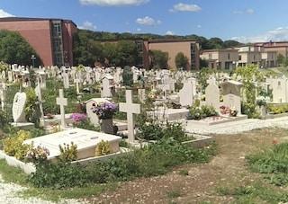 Resti umani trovati dai visitatori sulle tombe del cimitero di Prima Porta: indagano i carabinieri