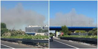 Incendio all'Ippodromo di Tor di Valle: fiamme nei pressi della pista ciclabile