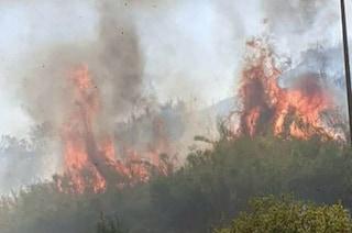 Incendio Monte Ciocci, a fuoco la riserva naturale: panico a Prati, il rogo continua a espandersi