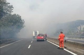 Incendio in via Aurelia, le fiamme minacciano un vivaio e un campo rom: strada chiusa