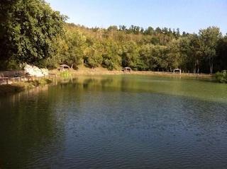 Bomarzo, trovato il cadavere di un uomo in un lago: recuperato dai sommozzatori