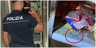 Escrementi di topo e blatte morte: chiuso un ristorante indiano alla Garbatella
