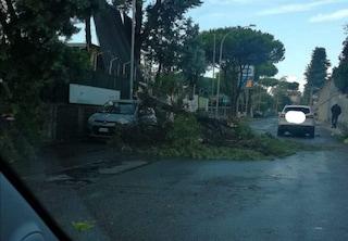 Maltempo su Roma, strade allagate: chiusa la stazione Cipro e il drive in di Monte Mario