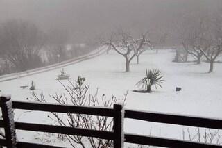 Meteo, ai Castelli Romani neve anche a bassa quota da Rocca di Papa ai Monti Prenestini