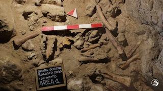 Grotta Guattari al Circeo, svelato il mistero: gli uomini di Neanderthal furono uccisi dalle iene
