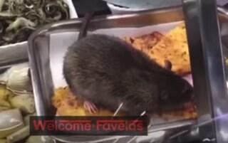 Il topo sul cibo a Roma: il video va online, ma l'alimentari aveva pagato il silenzio dei clienti