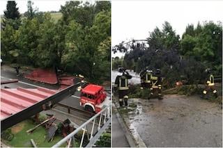 Danni all'aeroporto di Orio al Serio, alberi caduti e tetti divelti: maltempo si abbatte su Bergamo