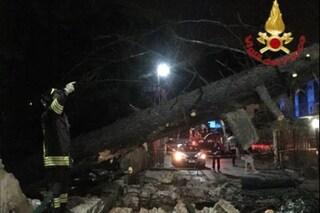 Maltempo, nubifragio e vento forte a Lodi: alberi abbattuti e tetti scoperchiati a Selvagreca