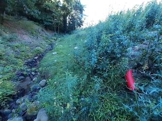 Como, scarico abusivo di liquami nel torrente del Parco Regionale Spina Verde: denunciate 2 persone