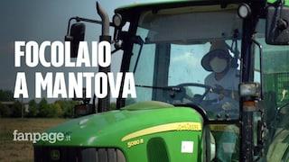 Focolaio nell'azienda agricola di Rodigo (Mantova): positivi altri 3 lavoratori