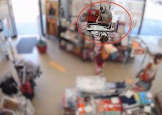Cassano d'Adda, armato e a volto coperto rapina tre negozi: arrestato uomo di 33 anni