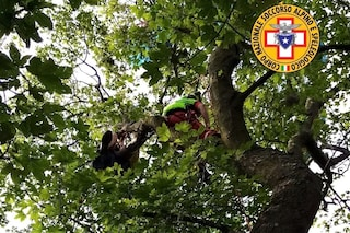 Civate, precipita col parapendio e resta appeso su un albero a 15 metri d'altezza