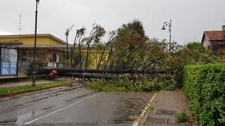 Danni in tutta la Lombardia per il maltempo, case evacuate in Valtellina e frane nel Varesotto