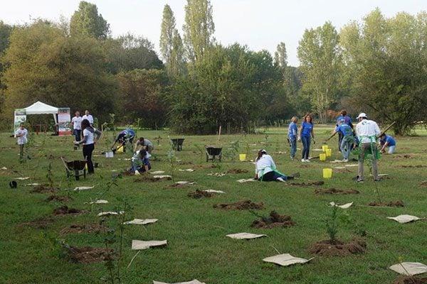 Alcuni dei volontari che piantano gli alberi del progetto ForestaMi