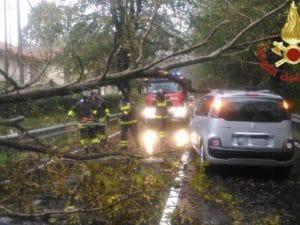 L'auto colpita dall'albero caduto a causa delle forti piogge nel Varesotto