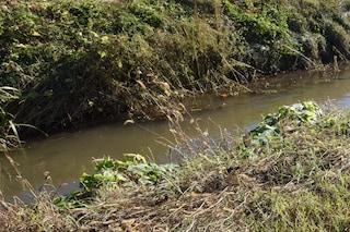 Brescia, uomo scivola in una roggia e annega: il corpo trovato dopo 10 ore