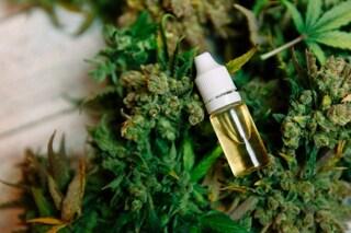 """Laura, milanese che non riesce a curarsi con la cannabis medica: """"Gara per averla, chi perde soffre"""""""