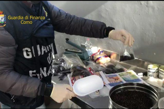 Alcuni dei prodotti alimentari sequestrati a Cologno Monzese (Fonte: Guardia di Finanza)