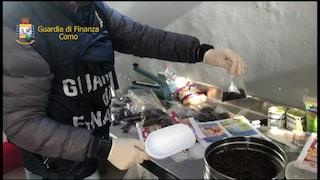 Cologno Monzese, cibo scaduto con vermi e insetti: sequestrate 9 tonnellate di alimenti