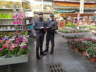 Inveruno, 100 lavoratori pagati a 3 euro l'ora: arrestato per caporalato il titolare di un vivaio