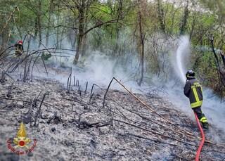 """Lecco, il Monte Croce devastato dalle fiamme per oltre 24 ore: """"Il fuoco alimentato dal vento forte"""""""