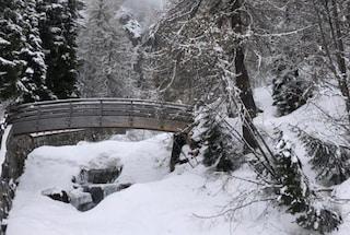 Maltempo in Valtellina e Valchiavenna, torna la neve: Madesimo e Livigno imbiancati