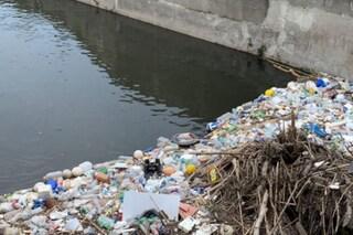 Rifiuti e topi tra il Lambro e il Naviglio Pavese a Milano: la denuncia dei residenti