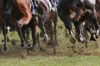 Garlasco, ragazzo di 16 anni perde 3000 euro puntando sui cavalli: chiusa sala scommesse