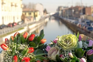 San Valentino 2017, a Milano i fiori si consegnano tramite App