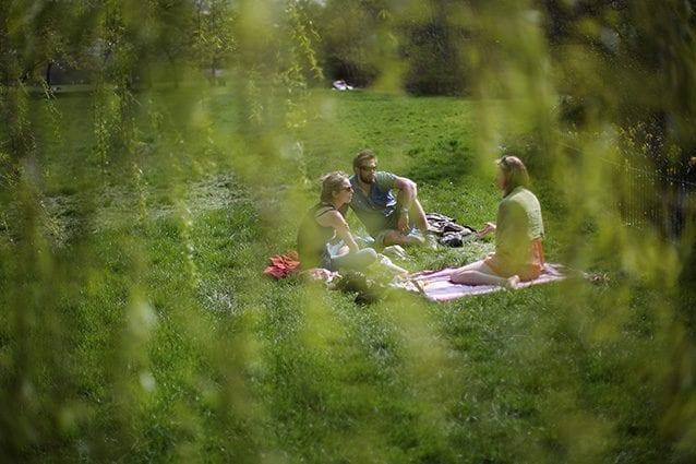 Picnic a Milano e dintorni: 6 parchi per rilassarsi con amici e famiglia