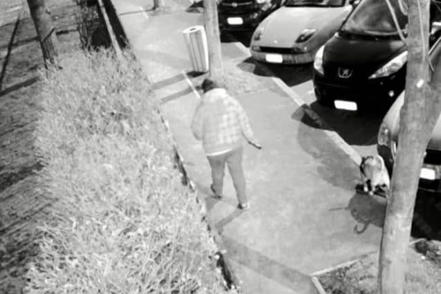 Una delle persone riprese dalle telecamere mobili poste dal sindaco di Cesano Boscone mentre non raccoglie gli escrementi del proprio cane