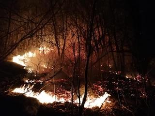 Bruciarono il bosco di Sorico facendo una grigliata: multa di 13 milioni di euro a due studenti