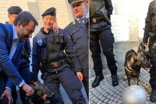 """Monza, Matteo Salvini inaugura la questura e posa col cane antidroga Narco: """"Bellissimo"""""""