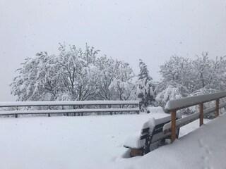 Presunta mala gestione emergenza neve, sindaca minaccia querela contro autori di post diffamatori