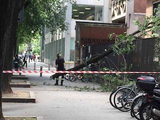 Milano, crolla un grosso ramo su via Fabio Filzi: passante salva per miracolo